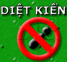 game-diet-kien