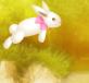 Đưa thỏ qua sông
