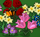 Trồng nụ trồng hoa