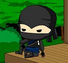 ninja-chuyen-hang