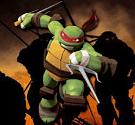 Đá Ninja rùa