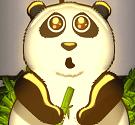 Giải cứu gấu trúc