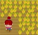 Tập làm nông dân