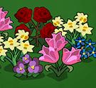 Bài trí vườn hoa 2