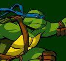 Ninja rùa ném phi tiêu