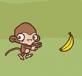 Khỉ con nhặt chuối