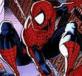 Spiderman trừ gian