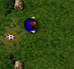 Trận bóng trong rừng