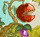 Hoa quả phòng thủ