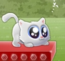 Mèo con nhảy xa