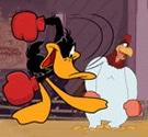 boxing-vit-bau
