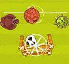 Động vật chơi bóng