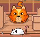 meo-bat-chuot