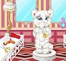 Tỉa lông cho mèo 3