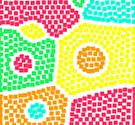 Bữa tiệc màu sắc – PARTICOLO