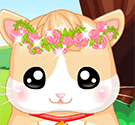 Hamster của tôi – My Baby Hamster