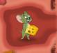 Tom và Jerry: Mê cung của chuột
