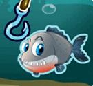 Câu cá mập